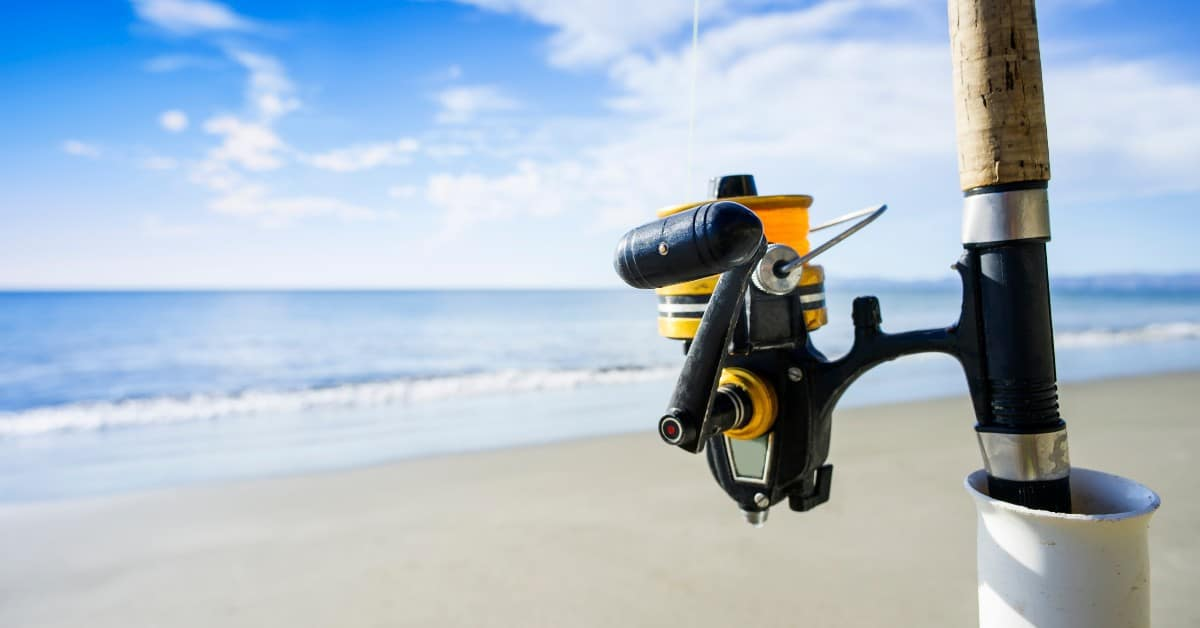 11 Best Spinning Rods For Surf Fishing