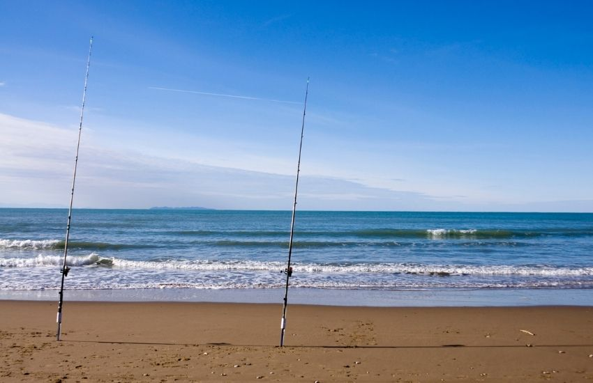 King of the Surf Fishing Rigs